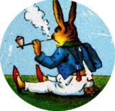 Rauchergesetz in Spanien – Österreich der Aschenbecher der EU?? Volksabstimmung gegen Raucher sinnvoll, oder Volksaufwiegelung??